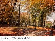 Купить «Осень в городском парке», фото № 24989478, снято 23 апреля 2016 г. (c) виктор химич / Фотобанк Лори