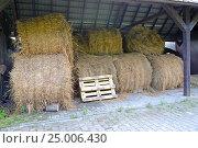 Рулоны сена лежат под навесом на сеновале. Стоковое фото, фотограф Ирина Борсученко / Фотобанк Лори