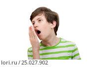 Купить «The boy yawns, isolated on white background», фото № 25027902, снято 22 января 2017 г. (c) Юлия Кузнецова / Фотобанк Лори