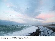 Seascape of the Black Sea in the winter. Стоковое фото, фотограф Анна Костенко / Фотобанк Лори