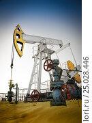 Купить «Oil pump jack and wellhead in the oilfield», фото № 25028446, снято 16 ноября 2014 г. (c) bashta / Фотобанк Лори