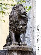 Купить «Скульптура льва в городе Цетинье, Черногория», эксклюзивное фото № 25065426, снято 10 апреля 2016 г. (c) Артём Крылов / Фотобанк Лори