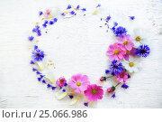 Flower composition on a wooden white background, фото № 25066986, снято 4 октября 2016 г. (c) Ирина Мойсеева / Фотобанк Лори