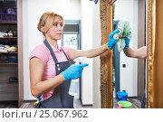 Купить «Cleaning service. Woman wiping wall mirror at home», фото № 25067962, снято 2 февраля 2017 г. (c) Дмитрий Калиновский / Фотобанк Лори