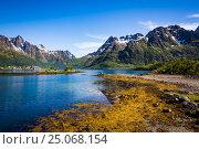 Купить «Lofoten archipelago islands Norway», фото № 25068154, снято 30 июня 2016 г. (c) Андрей Армягов / Фотобанк Лори