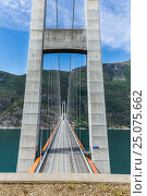 Купить «Suspension Bridge, Hardanger Bridge, Hardanger Fjord, South Norway», фото № 25075662, снято 23 июня 2016 г. (c) mauritius images / Фотобанк Лори