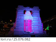Купить «Ледяные скульптуры в Парке Победы, Москва», фото № 25076082, снято 29 января 2017 г. (c) Алексей Сварцов / Фотобанк Лори