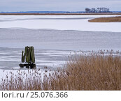 Купить «Germany, Mecklenburg-Western Pomerania, Western Pomerania Lagoon Area National Park, winterday on Barther Bodden / Barth Lagoon close Zingst», фото № 25076366, снято 13 октября 2016 г. (c) mauritius images / Фотобанк Лори