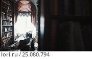 Купить «Tracking shot old style archive interior. Bookshelves. curtains, printer», видеоролик № 25080794, снято 11 октября 2016 г. (c) Александр Багно / Фотобанк Лори