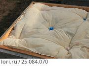 Подушка для 12-ти рамочного улья. Стоковое фото, фотограф Денис Кошель / Фотобанк Лори