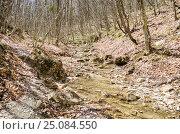 Купить «Река Боса в Крымском лесу весной», фото № 25084550, снято 29 марта 2014 г. (c) Выскуб Анна / Фотобанк Лори