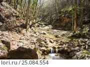 Купить «Река Боса в Крымском лесу», фото № 25084554, снято 29 марта 2014 г. (c) Выскуб Анна / Фотобанк Лори