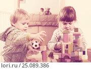 Купить «Two tranquil children playing with wooden blocks», фото № 25089386, снято 20 июня 2019 г. (c) Яков Филимонов / Фотобанк Лори