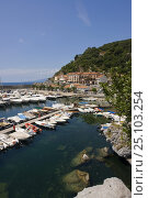 Купить «View of boats moored in the small harbour of Maratea, Basiliacata, Italy.», фото № 25103254, снято 16 августа 2018 г. (c) Nature Picture Library / Фотобанк Лори