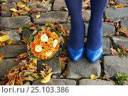 Купить «Синие туфли и букет рыжих хризантем», фото № 25103386, снято 15 октября 2016 г. (c) Ирина Еремеева / Фотобанк Лори