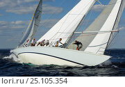 Купить «12m yachts during the 2006 12 Metre North American Championships, Newport, Rhode Island, USA.», фото № 25105354, снято 16 декабря 2017 г. (c) Nature Picture Library / Фотобанк Лори