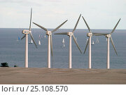Купить «Wind turbines looking out to sea at the start of the 2003 ARC (Atlantic Rally for Cruisers), Las Palmas, Gran Canaria.», фото № 25108570, снято 14 августа 2018 г. (c) Nature Picture Library / Фотобанк Лори