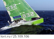 Team SEB in tough conditions off Cape of Good Hope, South Africa in Leg 2 of the Volvo Ocean Race, 2001-2002. Стоковое фото, фотограф Rick Tomlinson / Nature Picture Library / Фотобанк Лори
