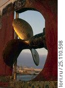Купить «Boat propeller, Cannes, France. October 2004», фото № 25110598, снято 21 августа 2018 г. (c) Nature Picture Library / Фотобанк Лори