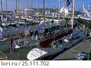 Купить «12 metres moored in Cowes Yacht Haven during the America's Cup Jubilee 2001, Isle of Wight, UK.», фото № 25111702, снято 18 июля 2019 г. (c) Nature Picture Library / Фотобанк Лори