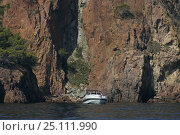 Купить «A motor yacht at anchor beside cliffs along the coast between Cannes and St. Tropez in the Mediterranean, October 2004.», фото № 25111990, снято 21 августа 2018 г. (c) Nature Picture Library / Фотобанк Лори