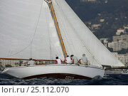 Купить «'Lulu', a restored 1897 6M yacht, beats to windward at the Regates Royales in Cannes, France. October 2004.», фото № 25112070, снято 16 июля 2018 г. (c) Nature Picture Library / Фотобанк Лори