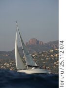 Купить «A cruising yacht sailing upwind along the coast between Cannes and St Tropez in the Mediterranean, October 2004.», фото № 25112074, снято 24 февраля 2019 г. (c) Nature Picture Library / Фотобанк Лори
