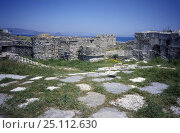 Купить «Inside the castle of the knights, Kos, Dodecanese Islands, Greece», фото № 25112630, снято 23 июля 2018 г. (c) Nature Picture Library / Фотобанк Лори