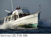 Купить «Grand Banks motoryacht», фото № 25114186, снято 16 октября 2019 г. (c) Nature Picture Library / Фотобанк Лори