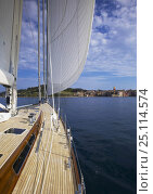 """Купить «Sailing aboard """"Pink Gin"""" in the gulf of St. Tropez, South of France.», фото № 25114574, снято 19 января 2020 г. (c) Nature Picture Library / Фотобанк Лори"""