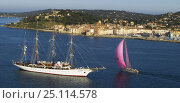 """Купить «Superyacht """"Pink Gin"""" sailing past the Tall Ship """"Sea Cloud"""" off the French town of St Tropez, South of France.», фото № 25114578, снято 7 декабря 2019 г. (c) Nature Picture Library / Фотобанк Лори"""