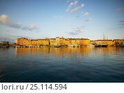 Купить «Still morning in St Tropex harbour, South of France.», фото № 25114594, снято 22 августа 2019 г. (c) Nature Picture Library / Фотобанк Лори