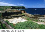 """Villa Giulia"", Ventotene Island, Pontine Islands, Italy. Стоковое фото, фотограф Roberto Rinaldi / Nature Picture Library / Фотобанк Лори"