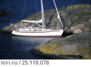 Купить «Najad cruising yacht tied to the rocks in the tideless Swedish Archipelago.», фото № 25118078, снято 20 сентября 2018 г. (c) Nature Picture Library / Фотобанк Лори