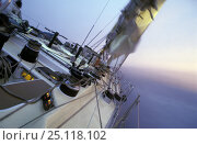 "Купить «Southern Ocean aboard Simon le Bon's maxi yacht ""Drum"" during the Whitbread Round the World Race, 1985.», фото № 25118102, снято 16 августа 2018 г. (c) Nature Picture Library / Фотобанк Лори"