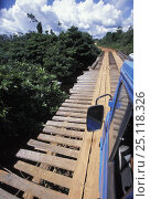 """Купить «Travelling over a rickety wooden bridge deep in the jungle while crossing the border between Brazil and Venezuela, 2001. ^^^During Sir Peter Blake's """"Seamaster"""" expedition.», фото № 25118326, снято 12 ноября 2019 г. (c) Nature Picture Library / Фотобанк Лори"""