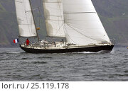 "Купить «Marie Tabarly, daughter of French sailing legend Eric Tabarly, sailing ""Pen Duick VI"" to Plymouth to watch the start of the Transat 2004, celebrating 40...», фото № 25119178, снято 17 августа 2018 г. (c) Nature Picture Library / Фотобанк Лори"