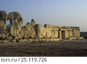 Купить «The Hagar Qim Neolithic temple, Malta», фото № 25119726, снято 20 октября 2018 г. (c) Nature Picture Library / Фотобанк Лори