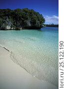 Купить «Deserted beach and clear water in a saltwater lagoon on Ile des Pins (Isle of Pines / Kanak Island),  Grande Terre, New Caledonia, Melanesia.», фото № 25122190, снято 16 июня 2019 г. (c) Nature Picture Library / Фотобанк Лори