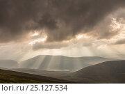 Купить «Shafts of light over Glenfeshie, Cairngorms National Park, Scotland, UK, September 2013.», фото № 25127534, снято 28 мая 2018 г. (c) Nature Picture Library / Фотобанк Лори