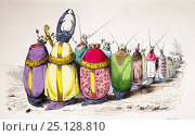 Lithograph comparing beetles to high ranking church members in bright robes. Published in 1842, Paris for 'Scenes de la vie privee et publique des animaux' by Jean Ignace Isidore Gerard. Стоковое фото, фотограф Paul D Stewart / Nature Picture Library / Фотобанк Лори