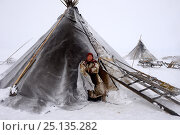 Купить «Nenet woman at entrance of tent in blizzard. Yar-Sale district. Yamal, Northwest Siberia, Russia. April  2016.», фото № 25135282, снято 19 июля 2019 г. (c) Nature Picture Library / Фотобанк Лори