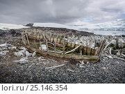 Купить «Remnants of a wooden waterboat amongst hundreds of whale bones, Mikkelsen Harbour, Antarctic Peninsula, Antarctica, January 2012.», фото № 25146354, снято 20 февраля 2019 г. (c) Nature Picture Library / Фотобанк Лори