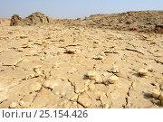 Sulphur formation, Dallol Volcano,  Danakil Depression, Ethiopia, March 2015. Стоковое фото, фотограф Eric Baccega / Nature Picture Library / Фотобанк Лори