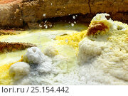 Dallol hot spring with salt concretions coloured by sulphur, potassium and iron, Dallol Volcano, Danakil Depression, Ethiopia, March 2015. Стоковое фото, фотограф Eric Baccega / Nature Picture Library / Фотобанк Лори