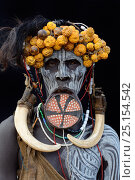 Купить «Portrait of woman from the Mursi tribe, traditionally decorated and painted, wearing a large clay lip plate, Omo Valley, Ethiopia, March 2015.», фото № 25154542, снято 9 июля 2020 г. (c) Nature Picture Library / Фотобанк Лори