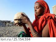 Afar tribe woman kneading a bread loaf before baking it, Malab-Dei village, Danakil depression, Afar region, Ethiopia, March 2015. Стоковое фото, фотограф Eric Baccega / Nature Picture Library / Фотобанк Лори