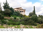 Купить «The Temple of Hephaestus surrounded by Cypress trees (Cupressus sempervirens), Olive trees (Olea europaea) and Prickly pears (Opuntia ficus-indica ). Attica region, Athens, Greece,  January 2011.», фото № 25157754, снято 24 февраля 2018 г. (c) Nature Picture Library / Фотобанк Лори