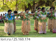 Купить «Traditional Fijian communal dance 'meke', combining dancing, singing, chanting, clapping and drum beating, Kavewa Island, Macuata Province, Fiji, South Pacific. August 2013», фото № 25160174, снято 2 июля 2020 г. (c) Nature Picture Library / Фотобанк Лори