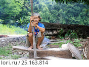 Купить «Dayak woman pounding rice, Central Kalimantan, Indoneisan Borneo. June 2010.», фото № 25163814, снято 18 июля 2018 г. (c) Nature Picture Library / Фотобанк Лори